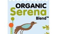 Starbucks Organic Serena Blend, reviewed